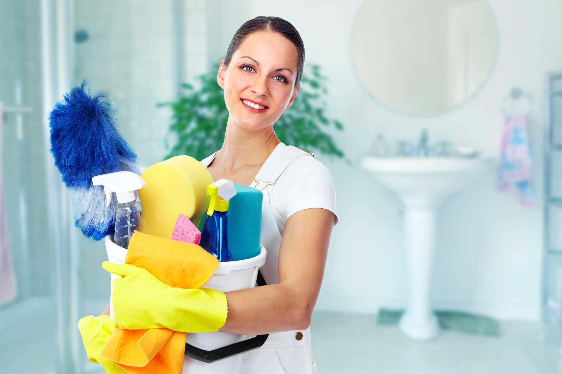 aide-menagere-accueil-ts-clean-titres-services